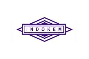 Indokem Limited