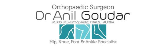 Dr Anil Goudar