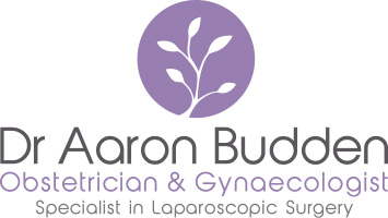 Dr Aaron Budden Specialist Obstetrician and Gynaecologist