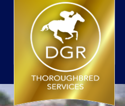 DGR THOROUGHBRED SERVICES PTY LTD