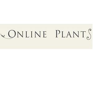 Online Plants