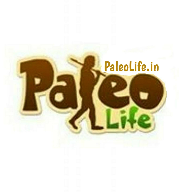 PaleoLife