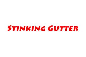Stinking Gutter TNHB Colony