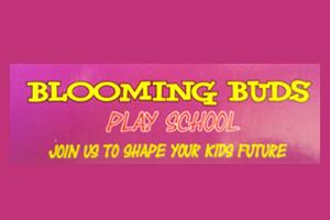 Blooming Buds Play School