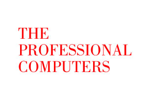 The Professional Computers