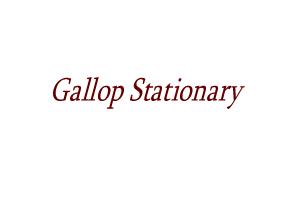 Gallop Stationary