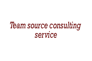 Team source consulting service