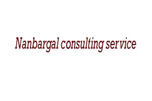 nanbargal consulting service
