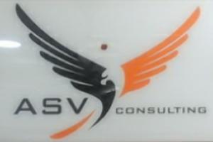 ASV Consulting Service