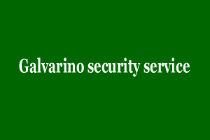Galvarino security service