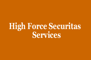 High Force Securitas & Services